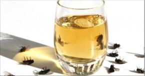 Deodorante naturale contro mosche e zanzare Contro mosche e zanzare ecco un deodorante naturale molto efficace per evitare l'utilizzo di prodotti chimici nocivi alla nostra salute. Mosche e z…