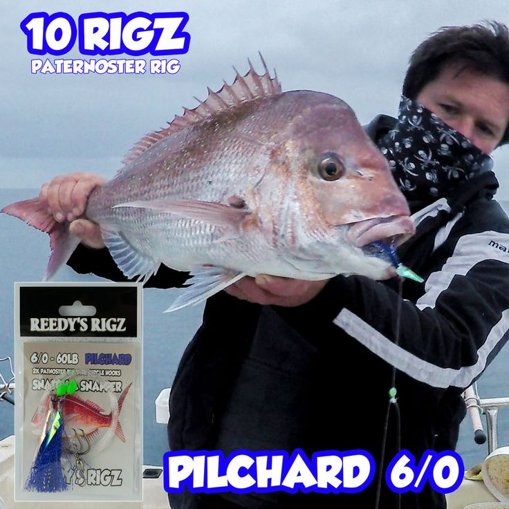 10 Snapper Rig 6/0 Circle Hook Fishing Rigs Flasher Lure Paternoster Bait Tied