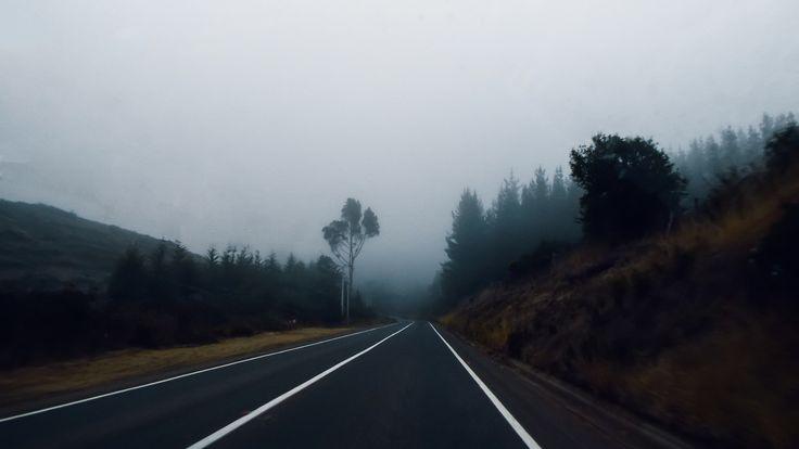 https://flic.kr/p/rRBdDK | En la niebla | Del camino entre Pichilemu y Litueche, niebla matutina.