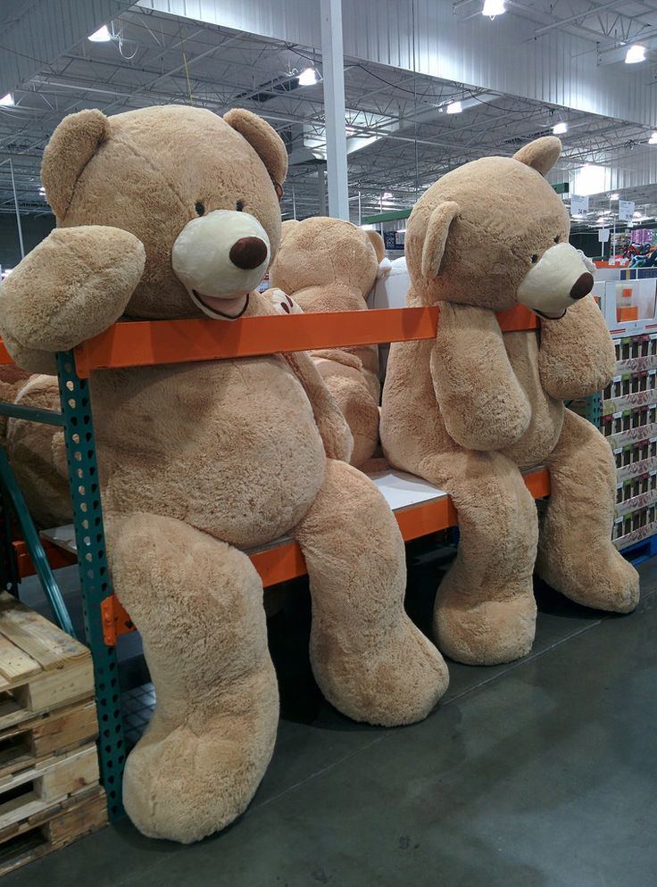 13++ Giant bear stuffed animal ideas in 2021