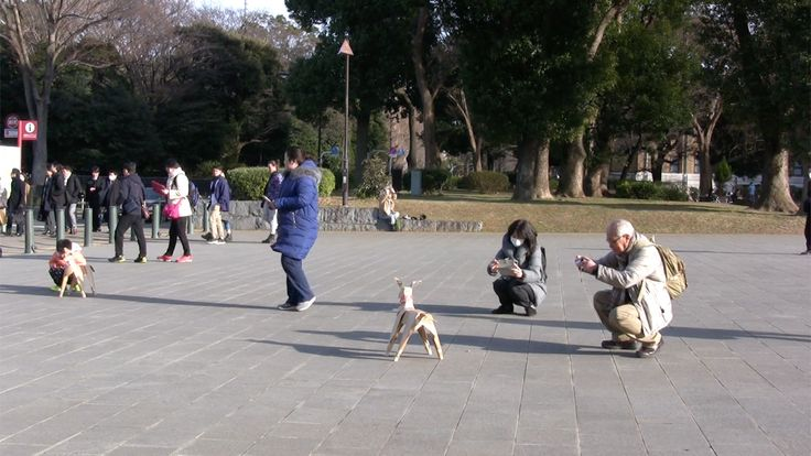 DOGTokyo2017 People in Ueno Park, Tokyo, loved seeing two DOGs and couldn't get enough selfies and snaps. Wait until hundreds of them are exhibited in the main installation.