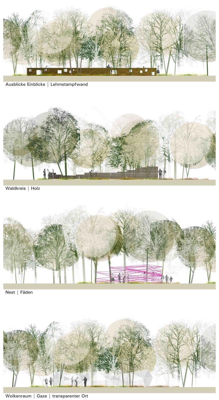 Plan And Elevation Of Trees : Best architectural presentation images on pinterest