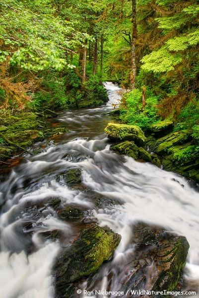 Tongass National Forest, United States
