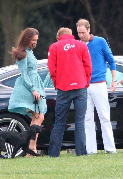 Prince William, Kate Middleton, Prince Harry and Lupo - Duchess of Cambridge - Marie Claire - Marie Claire UK