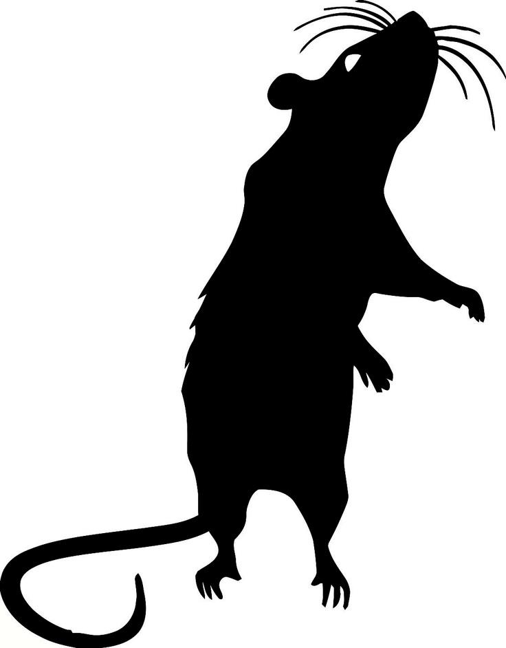 сеймейства картинка крысы для вырезания платят