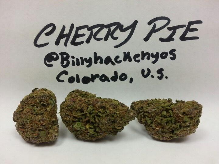 Got my lights set up finally!  Cherry Pie, indica, and crazy body buzz. Super HD high resolution (3264x2448) Follow Me @Billyhackenyos #cannabis #marijuana #weed maryjane #cherry #pie