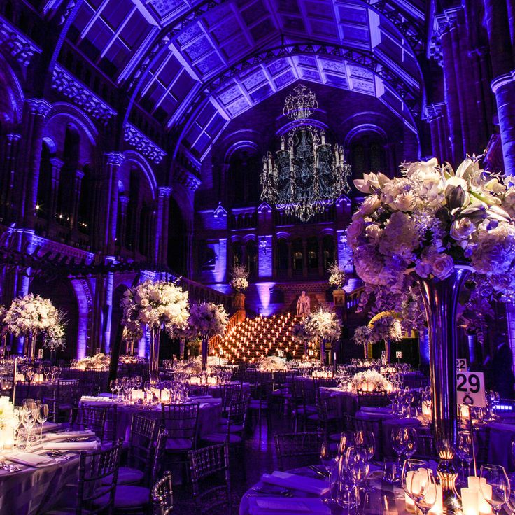 Best wedding venues in the UK | Most beautiful British wedding venues | Natural History Museum
