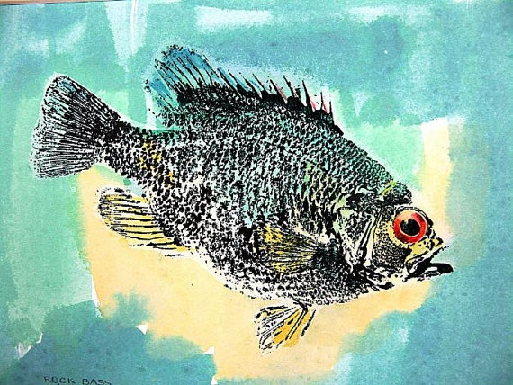 17 best images about gyotaku on pinterest limited for Rock bass fish
