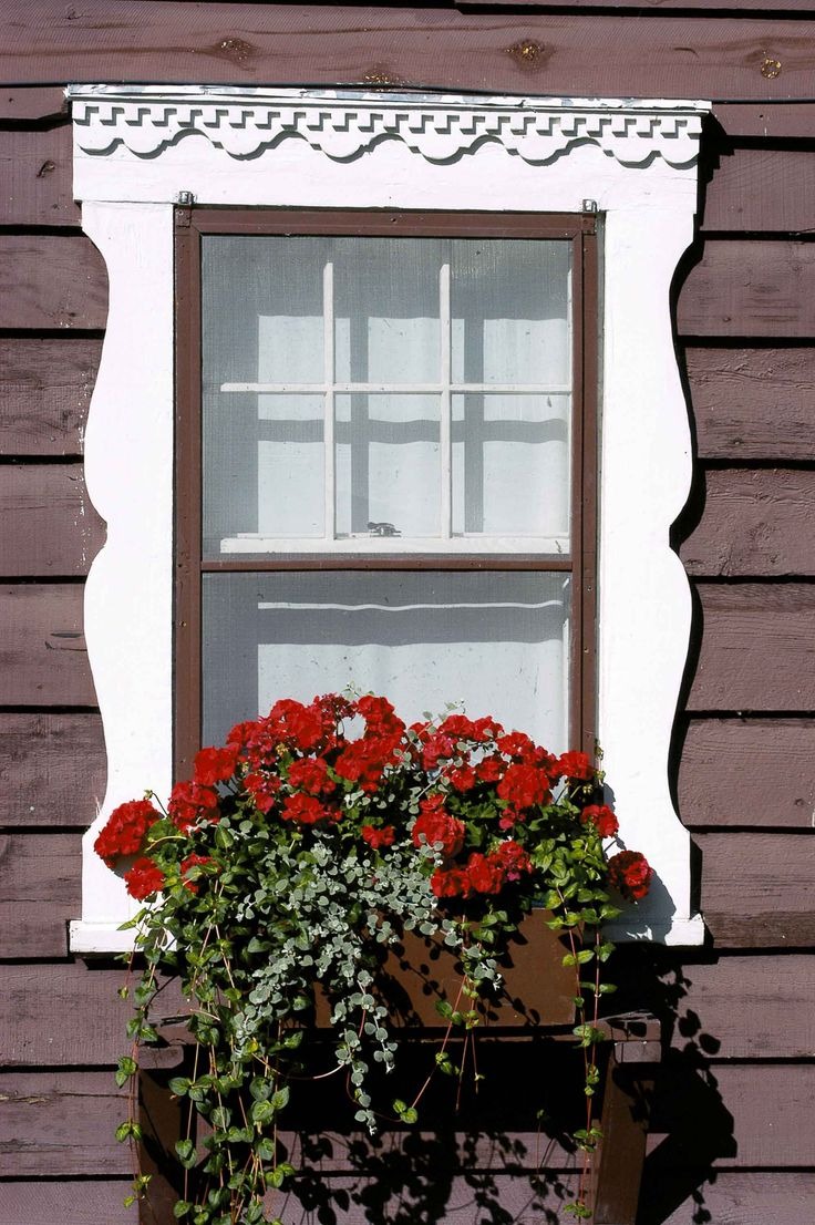 64 Best Images About Window Boxes On Pinterest