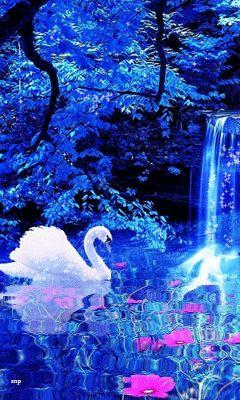 Анимация Белый лебедь на на воде с цветами на фоне водопада и деревьев, гифка Белый лебедь на на воде с цветами на фоне водопада и деревьев