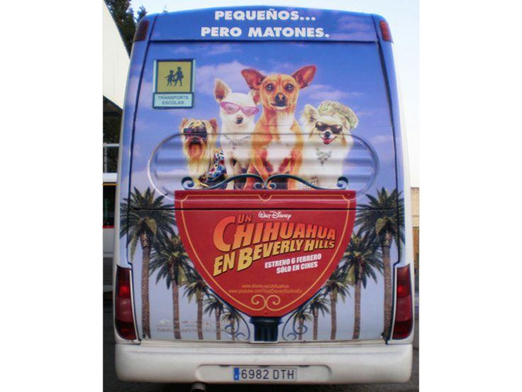 """Publicidad Traseras Autobuses Escolares   SP Integrales Publicidad en bus escolar de """"Un Chihuahua en Beverly Hills"""""""
