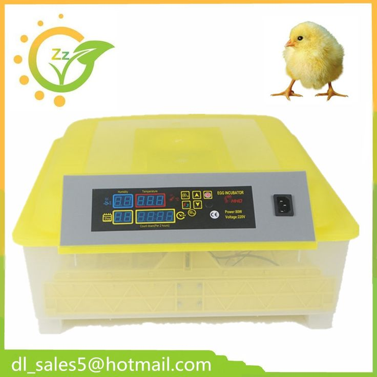41.96$  Buy here - http://ai8vv.worlditems.win/all/product.php?id=32793997602 - Practical Small Egg Brooder  Incubator automatic  48 Temperature Controller Mini Poultry Hatchery  machine CE Approved