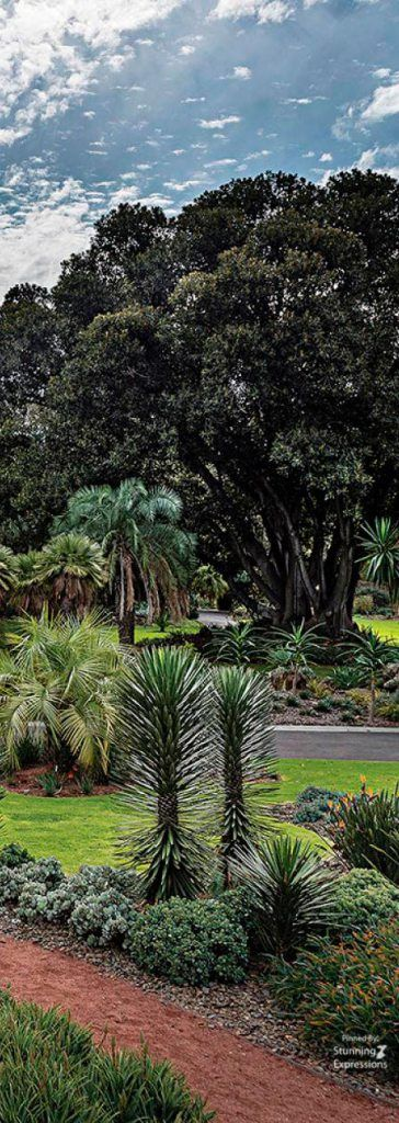 Royal Botanical Gardens – Melbourne | Australia