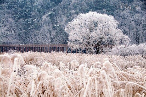 South Korea Landscape | ... in chuncheon south korea tags landscape winter chuncheon south korea