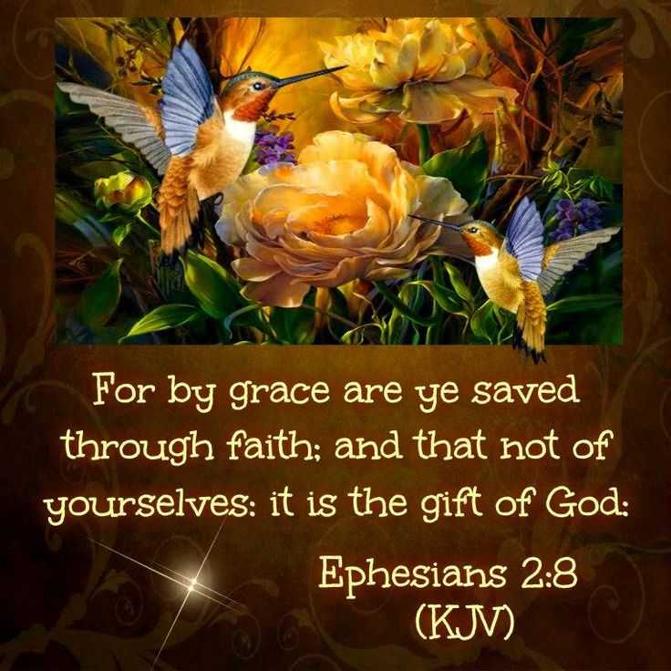 567 best bible verses images on pinterest bible quotes bible by grace you are saved through faith is the gift of god negle Image collections