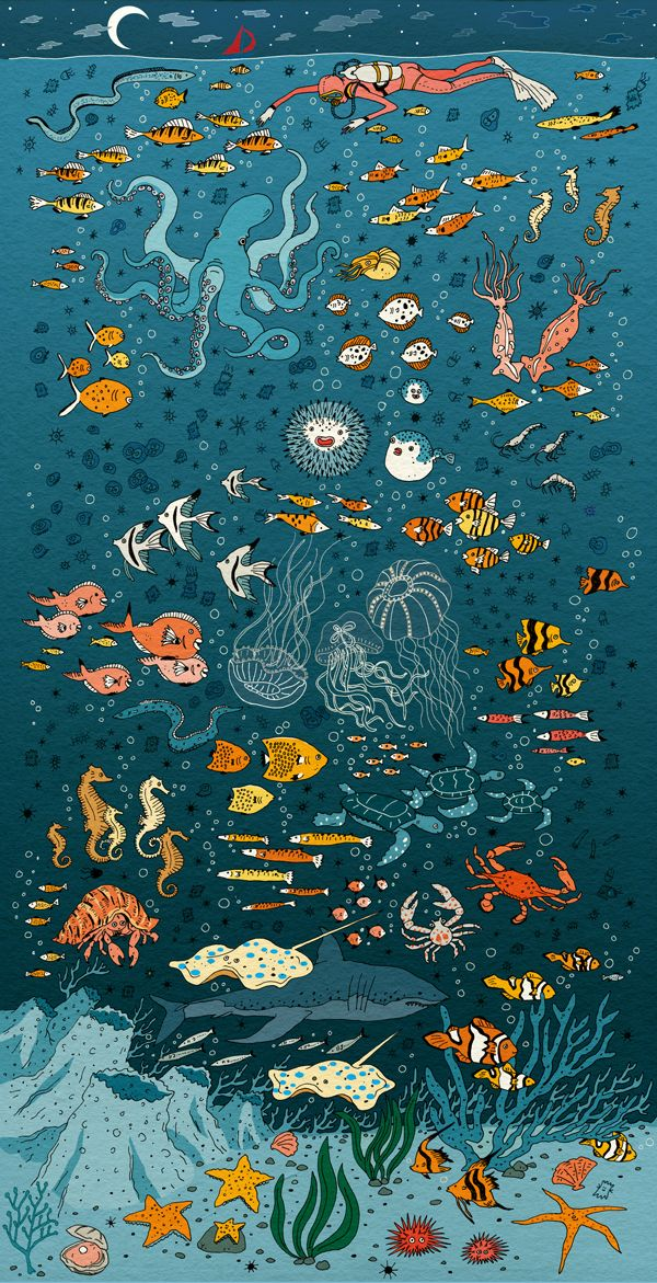 Under the sea.                                                                                                                                                                                 More