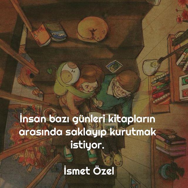 İnsan bazı günleri kitapların arasında saklayıp kurutmak istiyor.   - İsmet Özel  #sözler #anlamlısözler #güzelsözler #manalısözler #özlüsözler #alıntı #alıntılar #alıntıdır #alıntısözler