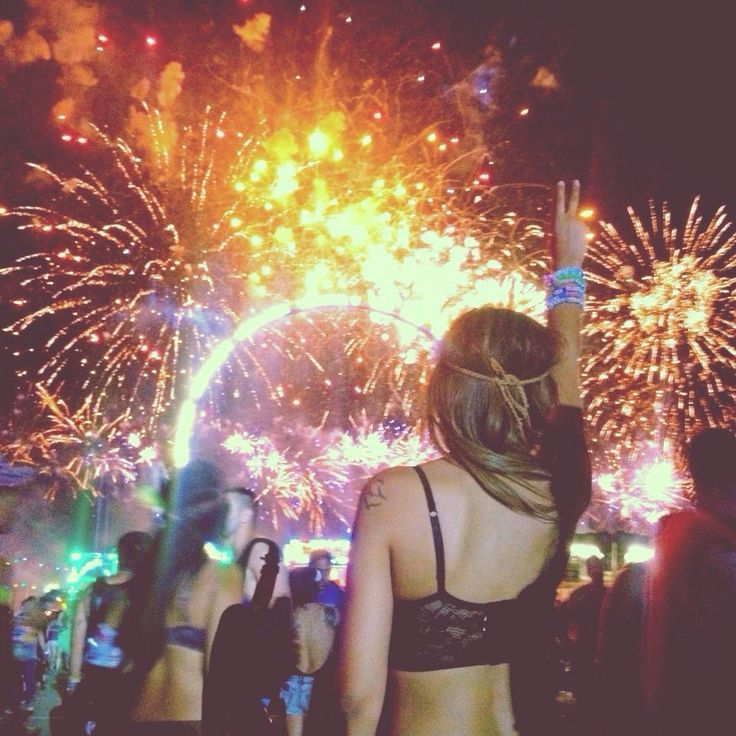 Electric daisy carnival 2014