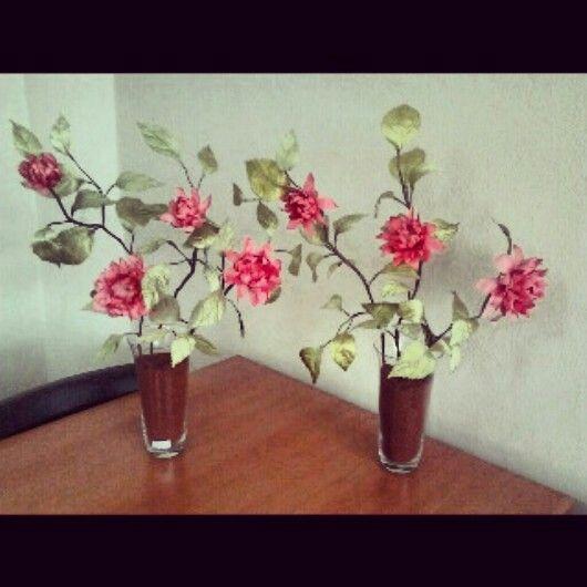 Dekoratif Yıldız çiçekleri