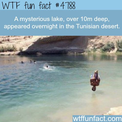 Mysterious lake appeared overnight in the desert - WTF fun facts