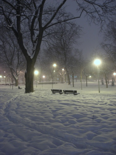 NDG Park, Montreal en hiver. Notre Dame de Grace