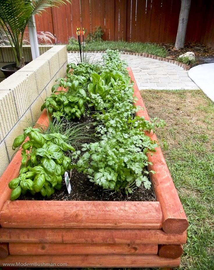 Anxious to get my herb garden started in the new house!