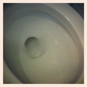 Vinegar Toilet Cleaner.  Works AWESOME!
