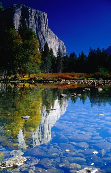 Autumn reflections of the 3000 foot (900m) sheer face of El Capitan in Yosemite National Park. (Emily Riddell)