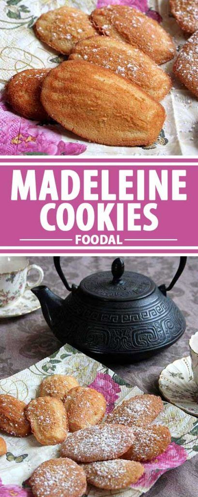 Looking for that exquisite taste and spongy, crumb free texture that only a madeleine cookie can fill? Try this recipe. It's the classic and simplest form. A French original that's super simple to make make. Get the recipe on Foodal now.