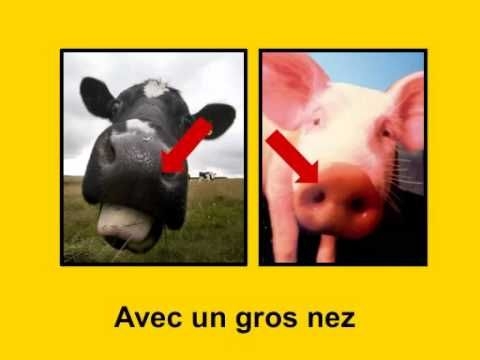 Avec un gros nez par Alain Le Lait--he has several other videos on youtube
