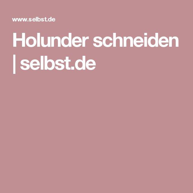 Holunder schneiden | selbst.de