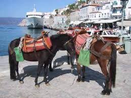 hydra greece - Google Search