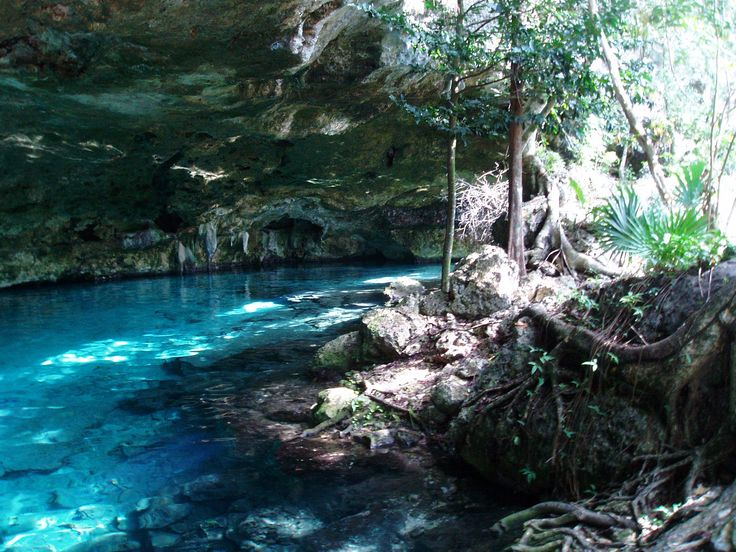 Read all about the cenotes near Casa Om!