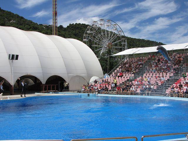 ZOOSAFARI delfinario