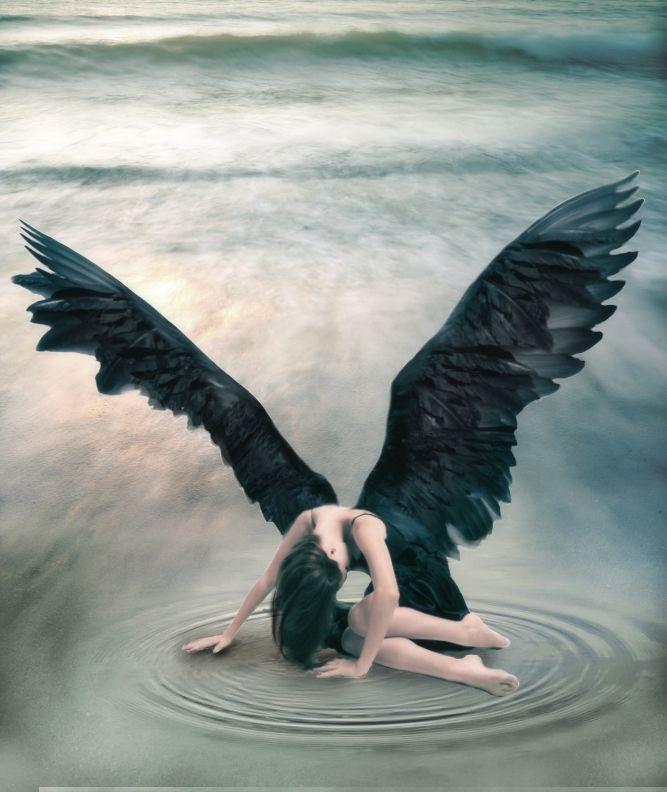 Best 25+ Dark angel wings ideas on Pinterest | Dark wings, Black ...