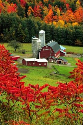 Farm in the valley, surrounded by the colors of autumn