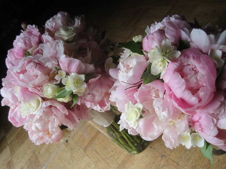peonies with mexican orange blossom
