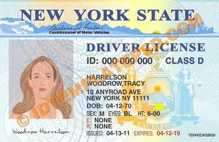 License Template - Download York New Psd State Pigiprice Drivers