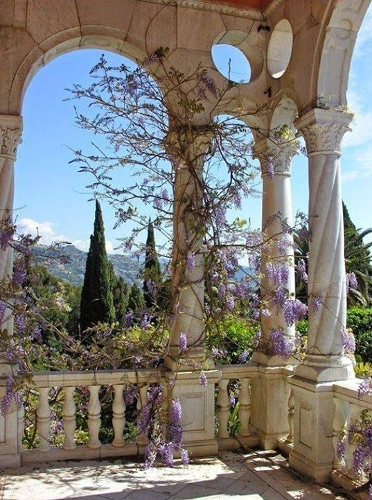 The Giardini Botanici Hanbury (18 hectares), also known as Villa Hanbury, are major botanical gardens operated by the University of Genoa.
