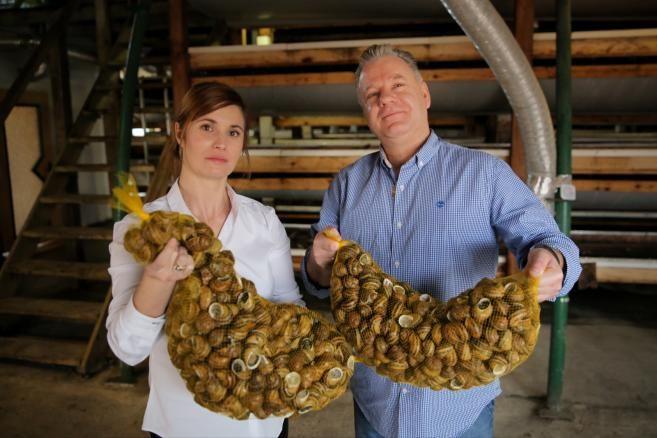 Ferma ślimaków Snails Garden w Krasinie koło Pasłęka. Na zdjeciu właściciele firmy Grzegorz Skalmowski (P) i Mariola Piłat-Skalmowska (L). (tw/mr) PAP/Tomasz Waszczuk