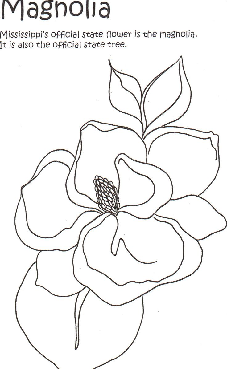 find this pin and more on coloring pages states