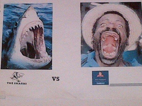 Stormers vs Sharks