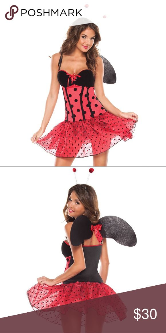 NEW 3 PC LADY BUG CUTIE Halloween Cosplay Costume BRAND NEW!!! This cute little lady bug will not only find her way into your home, but into your heart! Features red and black flocked polka dot organza and satin dress with velveteen padded cups. Dress has center front lace up detailing and adjustable straps. Includes mini antennas and black nylon wings. Coquette Other