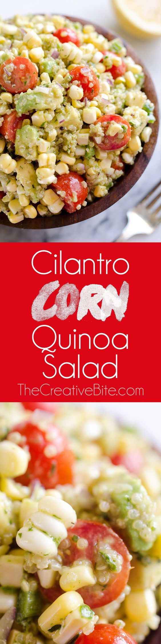 Cilantro Quinoa Corn Salad is a light and refreshing salad perfect for an easy packed lunch or a side salad for a cookout. This salad is a healthy combination of quinoa, corn, avocado and a light Cilantro Lemon dressing with a kick of spice from fresh jalapeños for a dish you will love! #Healthy #Salad #Quinoa