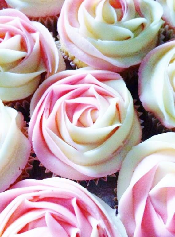 Two tone rose cupcakes