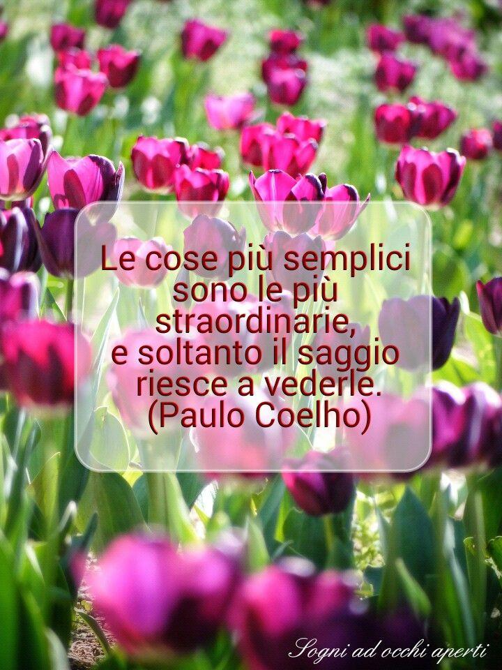 Le cose più semplici sono le più straordinarie, e soltanto il saggio riesce a vederle (P.Coelho) #citazioni #frasi #aforismi #vita #pensieri #fiori