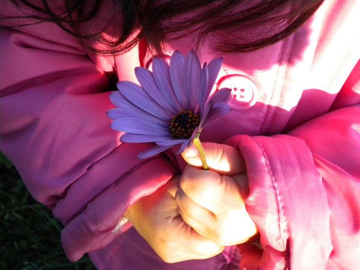La flor y Francisca