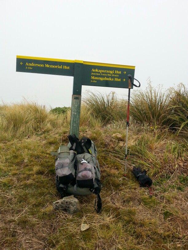 Halfway point between Maungahuka and Andersons Memorial hut.