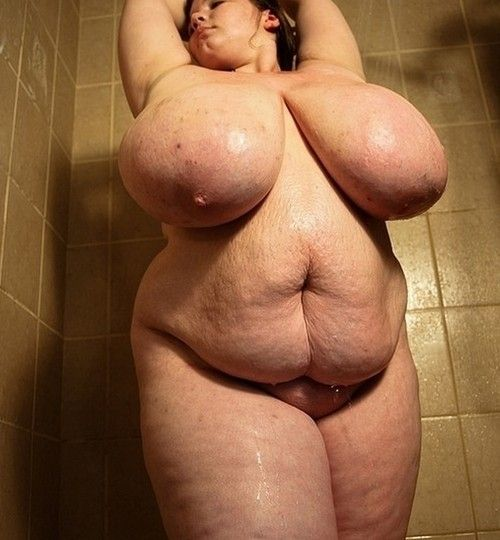 Chubby forced anal galleries