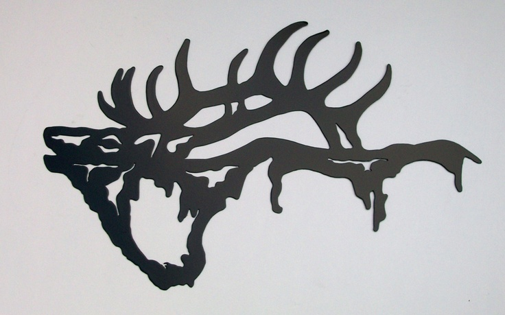 1000 Images About Elk On Pinterest Rocky Mountains
